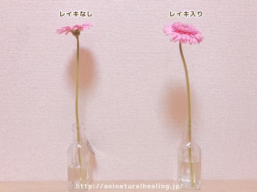 レイキの効果お花